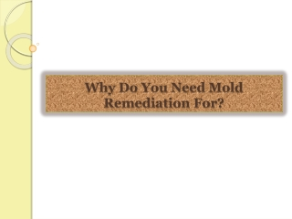 Why Do You Need Mold Remediation For?