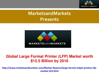Large Format Printer (LFP) Market Research Report.