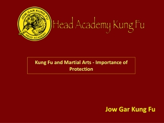 Kung Fu and Martial Arts - Importance of Protection