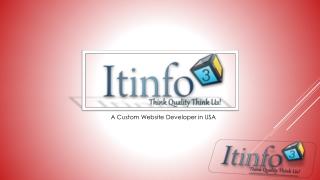 Custom Website Developer in USA