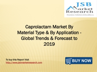 JSB Market Research - Caprolactam Market By Material Type