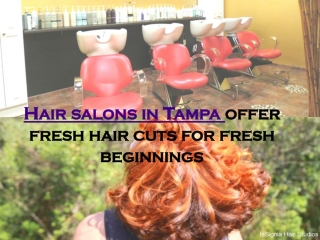 Hair salons in tampa offer fresh hair cuts for fresh beginni