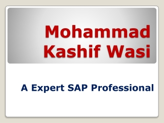 Mohammad Kashif Wasi-Expert SAP Professional