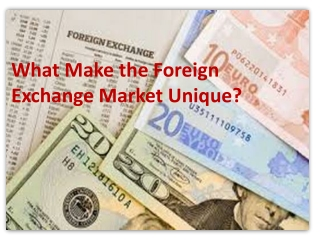What Make the Foreign Exchange Market Unique?