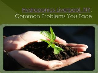 hydroponics liverpool