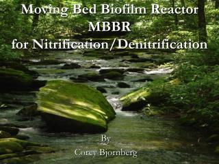 moving bed biofilm reactor mbbr for nitrification