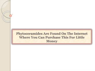 Phytoceramides Are Found On The Internet Where You Can Purch