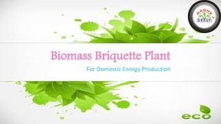 Biomass Briquette Plant for Domestic Energy Production