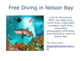 Free Diving in Nelson Bay