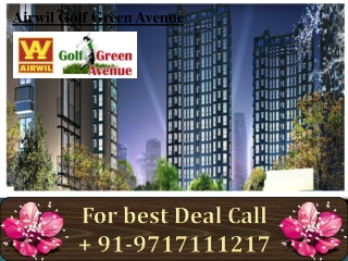 Airwil Golf Green Avenue | Golf Green Avenue |  Airwil Golf