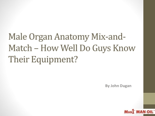 Male Organ Anatomy Mix-and-Match � How Well Do Guys Know
