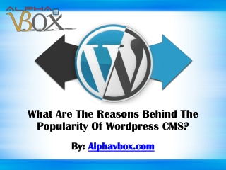 What Are The Reasons Behind The Popularity Of Wordpress CMS?