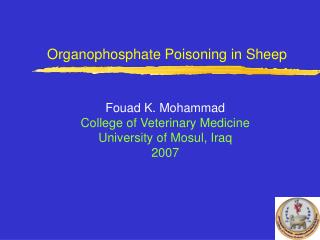 organophosphate poisoning in sheep