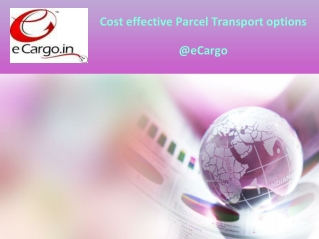 Cost effective Parcel Transport options