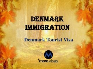 Denmark Tourist Visa