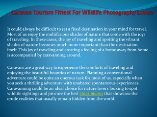 Caravan Tourism Fittest For Wildlife Photography Lovers