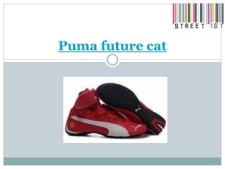 Puma future cat
