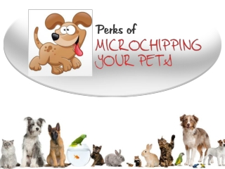 Pet Microchipping Clinic in Wentzville � Protect your Pets
