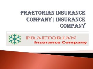 Praetorian Insurance Company – Basic of Car Insurance