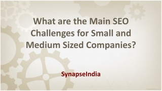 Main SEO Challenges for Small and Medium Companies