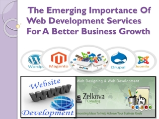 The Emerging Importance Of Web Development Services For A Be