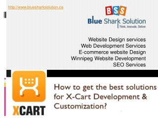the best solutions for X-Cart Development & Customization