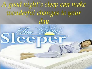 True Sleeper Best Price Online Shopping