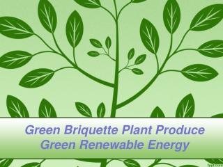 Green Briquette Plant Produce Green Renewable Energy