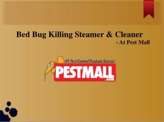 Bed Bug Killing Steamer