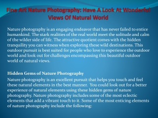 Fine Art Nature Photography: Have A Look At Wonderful Views