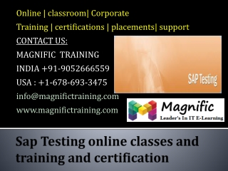 Sap Testing online classes and training and certification