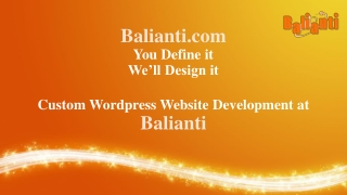 Custom Wordpress Website Development at Balianti