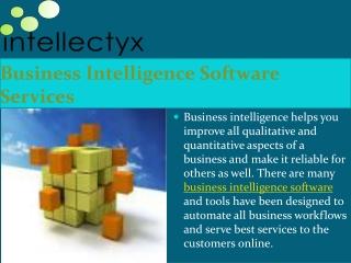 BI Consulting Service