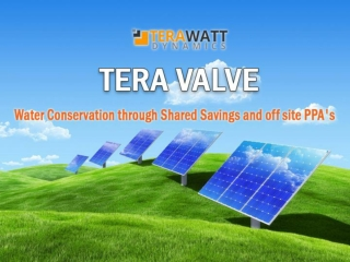 Alternative Energy Finance Solutions – TeraWatt Dynamics