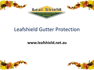 Leaf Gutter Guard Protection Service in Sydney