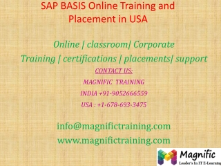 SAP BASIS Online Training and Placement in USA