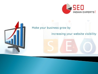 SEO Indian Experts-Services
