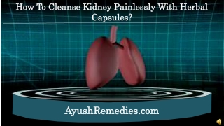 How to Cleanse Kidney Painlessly With Herbal Capsules?