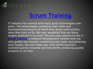 Work Process   Agile Training