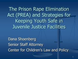 The Prison Rape Elimination Act (PREA) and Strategies for Keeping Youth Safe in Juvenile Justice Facilities