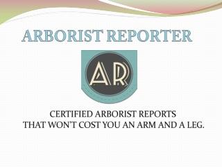 Residential Arborist Report | Construction Arborist Report