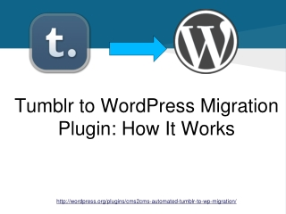 Tumblr to WordPress Migration Plugin. How It Works
