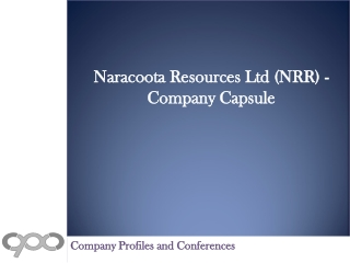 Naracoota Resources Ltd (NRR) - Company Capsule