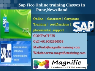 Sap Fico Online training Classes In Pune,Newziland