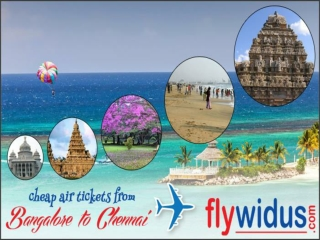 Book Flights from Bangalore to Chennai and Discover the Dive