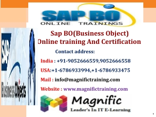 Sap BO(Business Object) Online Training And Certification