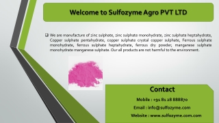Sulfozyme Agro manufacture of zinc sulphate