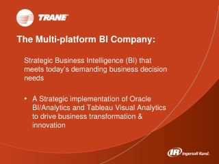 The Multi-platform BI Company: