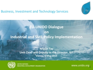 EU -UNIDO  Dialogue on  Industrial and  SME  Policy Implementation   Nilgün Taş Unit Chief and Deputy to the Director,