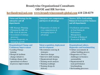 Brandywine Organizational Consultants OD/OE and  HR Services havilandrm@aol.com www.brandywineconsult-global.com  610 2